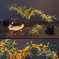 Sea buckthorn and kettle                                      3D Model