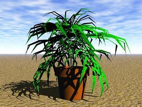 Plant 06 Free 3D Model