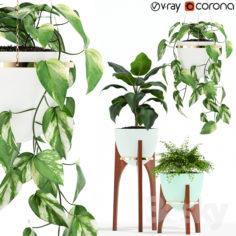 Plants collection 134 Retro Print Revival Planter                                      3D Model