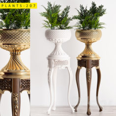 Plants 207                                      3D Model