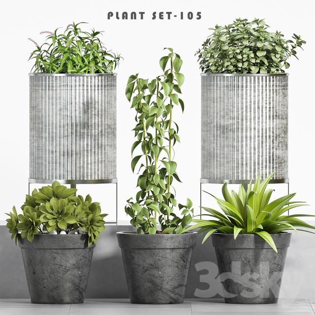 plant set-105                                      3D Model