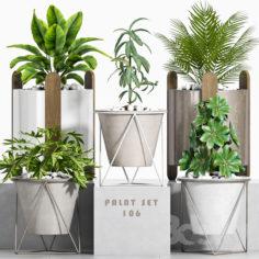 plant set-106                                      3D Model