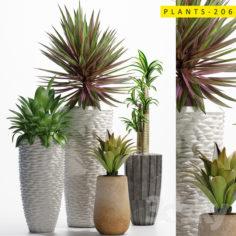 plants_206                                      3D Model