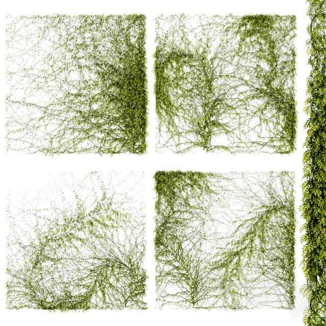 Leaves for walls v4                                      3D Model