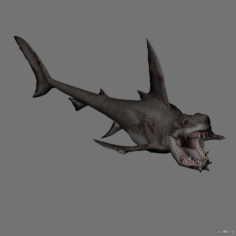 Zombi shark 2 3D Model