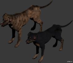 Raider Dog 3D Model