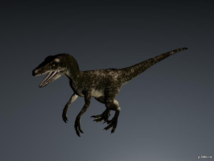 Dakotaraptor 3D Model