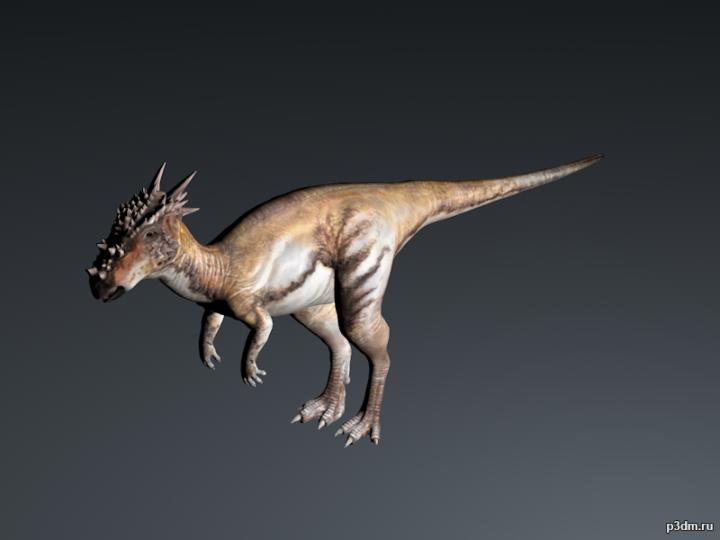 Dracorex 3D Model