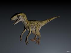 Utahraptor 3D Model
